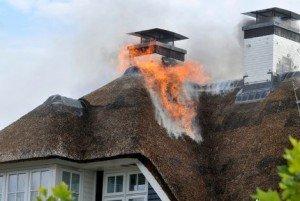 Welke soorten riet kunt u voor uw dak gebruiken?