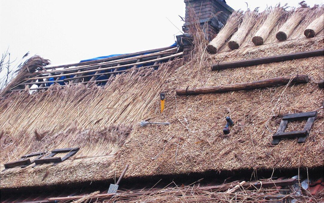 Uw traditionele rieten kap verduurzamen
